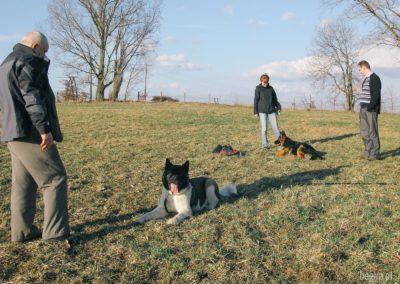 bagira-szkolenia-psow-behawiorysta-02