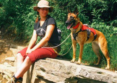 Bagira szkolenie psów behawiorysta - Szkolenie średniozaawansowane