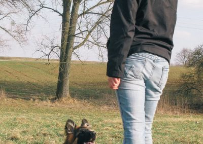 bagira-szkolenia-psow-behawiorysta-106