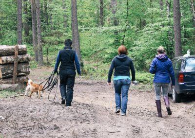 bagira-szkolenia-psow-behawiorysta-113