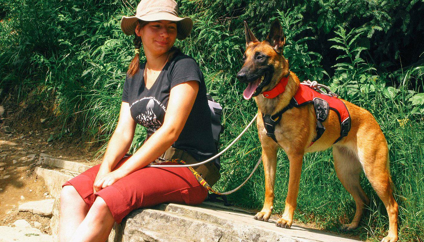 Bagira - szkolenie psów, behawiorysta - Dogtracking